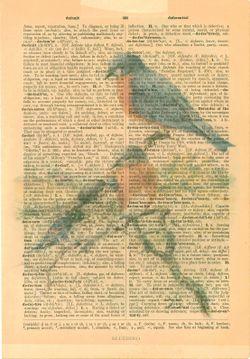Blue bird on dictionary