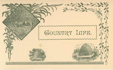 Chapter headings country
