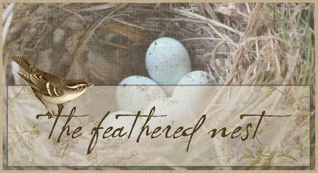 Feathered nest banner