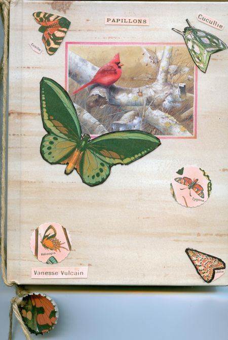 Sally's altered book front