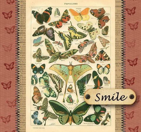 Joy's butterfly card